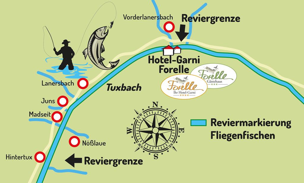 Forelle-tux-Fischrevier-2017.jpg